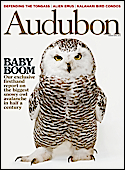 Subscribe to Audubon Magazine