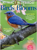 Best Price for Birds & Blooms Magazine Subscription