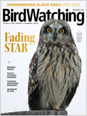 Best Price for BirdWatching Magazine Subscription