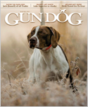 Subscribe to Gun Dog Magazine