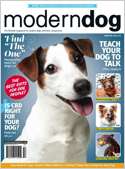 Subscribe to Modern Dog Magazine