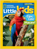 Subscribe to National Geographic Little Kids Magazine